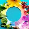 lupa-cores-detetive-natureza-printkids-1