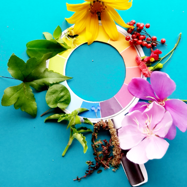 lupa-cores-detetive-natureza-printkids